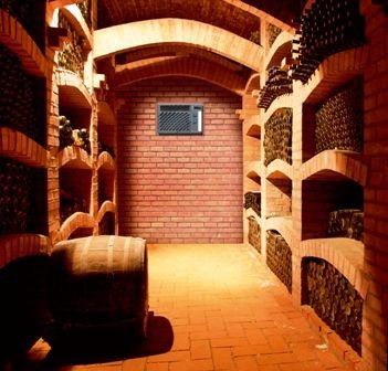 Weinklimagerät bis 50m³ – WineMaster C50-Serie Einbaulösung